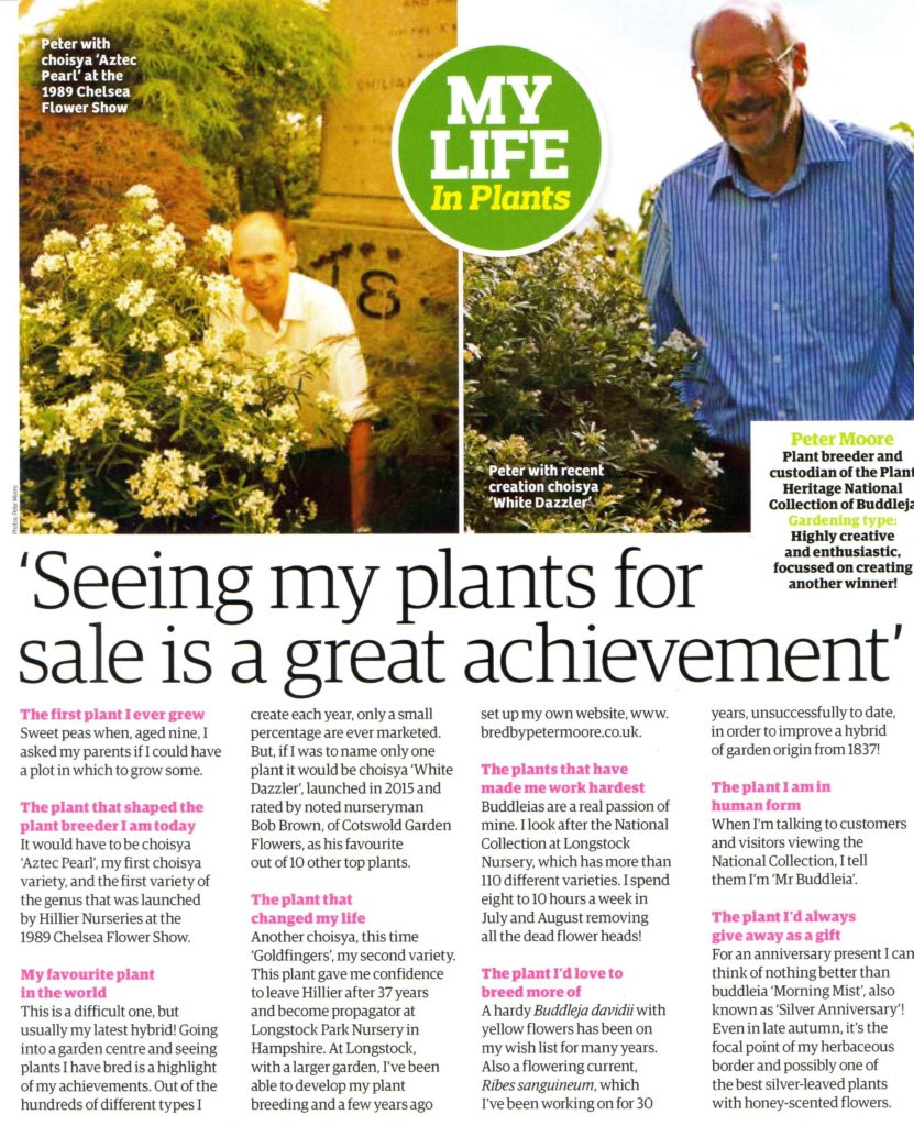 my-life-in-plants-dec-2016-2